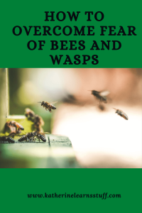 fear of bees and wasps pin